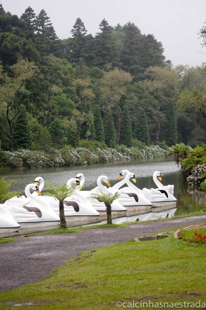 LagoNegro2 682x1024 - Curiosidades sobre o Chimarrão no Parque Gaúcho