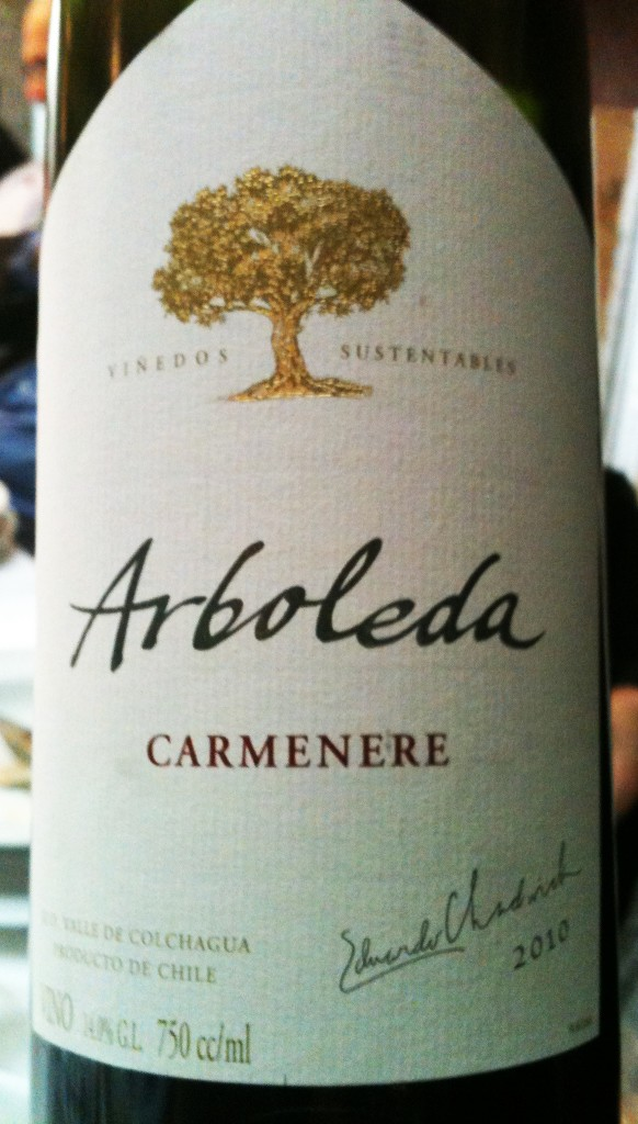 Arboleda Carmenère 582x1024 - Arboleda vinhos chilenos