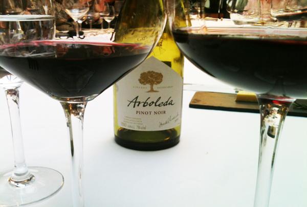 Arboleda Pinot Noir Home - Arboleda vinhos chilenos