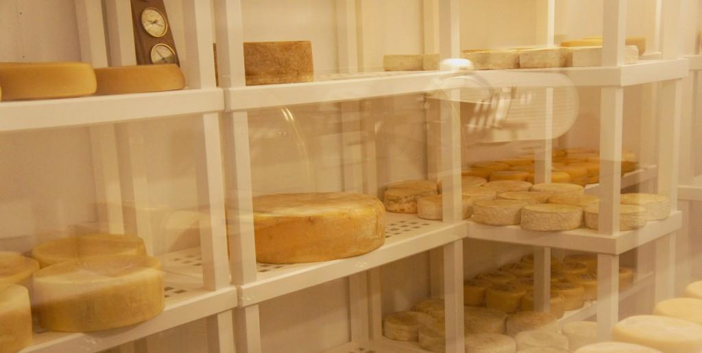 Mercearia Mestre Queijeiro Câmara de Maturação foto Cuecas na Cozinha 1024x516 - Mercearia Mestre Queijeiro